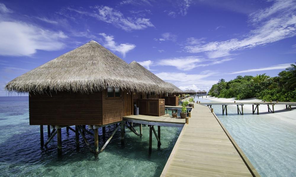 미리히 아일랜드 리조트(Mirihi Island Resort) Hotel Image 28 - Guestroom View
