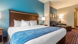 Comfort Suites Fairview Heights