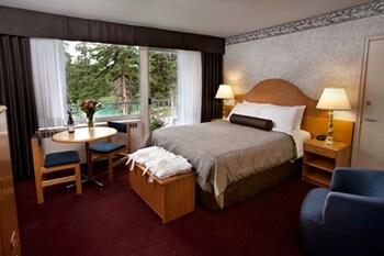 Room, 1 Queen Bed, River View