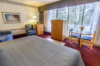 Standard Room, 1 King Bed with Sofa bed, Mountain View