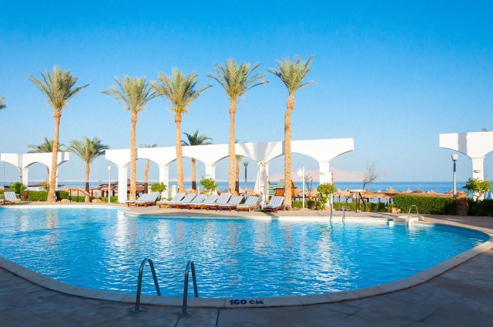 코럴 비치 리조트 몬타자  - 어른 전용(Coral Beach Resort Montazah - Adults Only) Hotel Image 8 - Pool