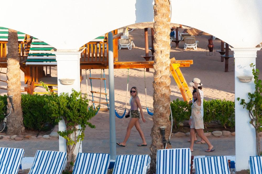 코럴 비치 리조트 몬타자  - 어른 전용(Coral Beach Resort Montazah - Adults Only) Hotel Image 55 - Garden