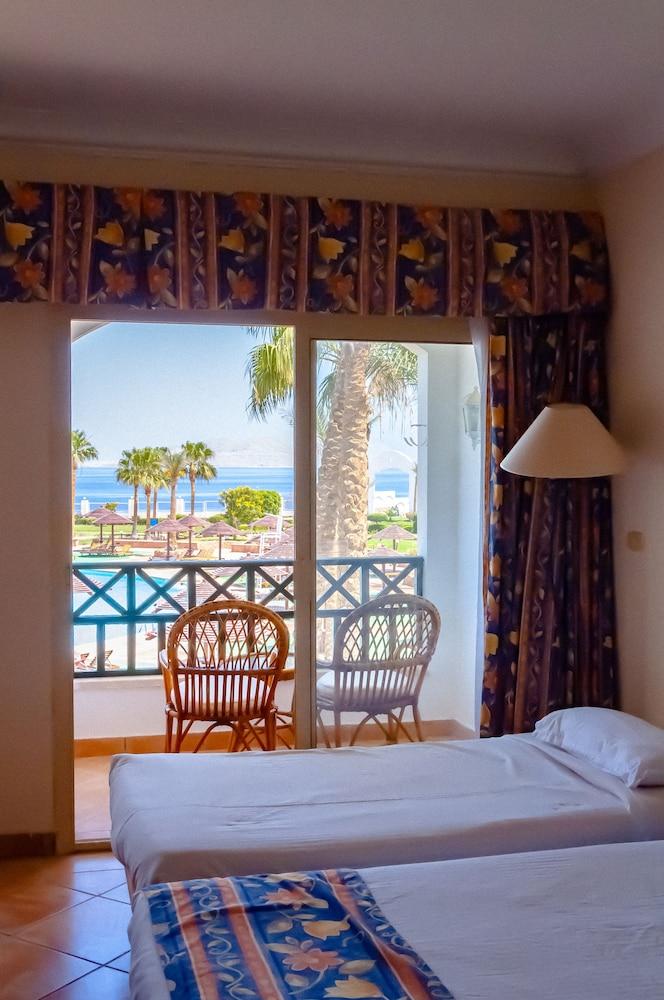 코럴 비치 리조트 몬타자  - 어른 전용(Coral Beach Resort Montazah - Adults Only) Hotel Image 16 - Guestroom