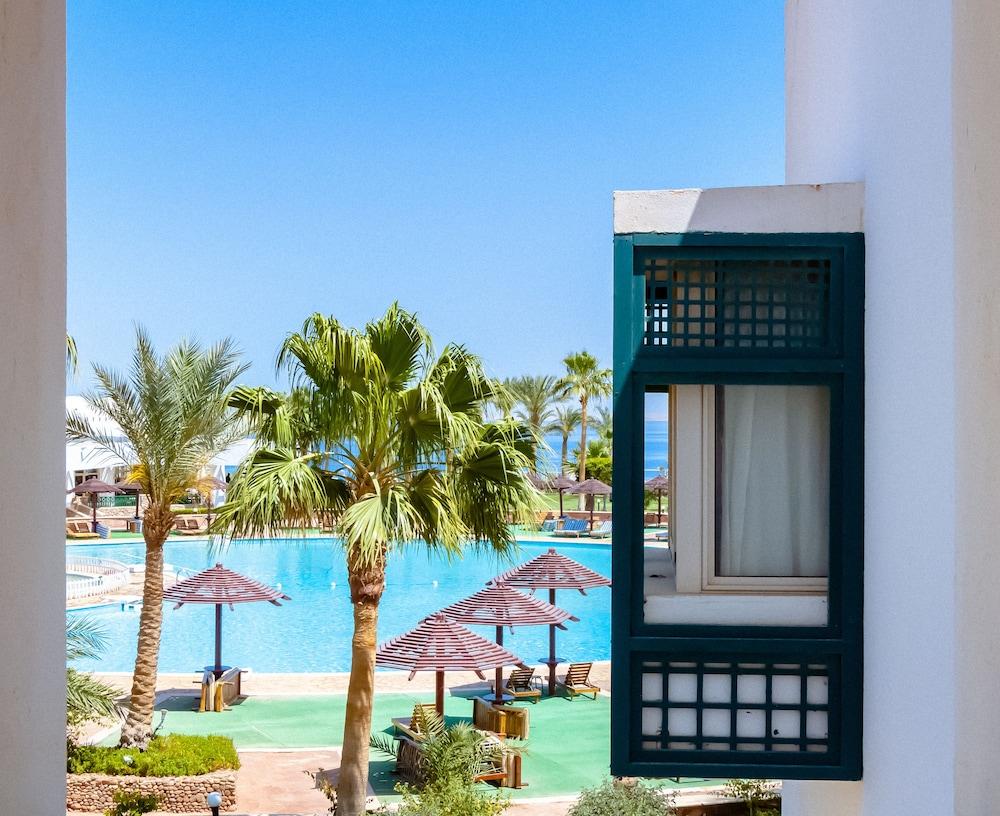 코럴 비치 리조트 몬타자  - 어른 전용(Coral Beach Resort Montazah - Adults Only) Hotel Image 23 - Guestroom View