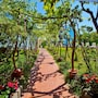 The thumbnail of Garden large image