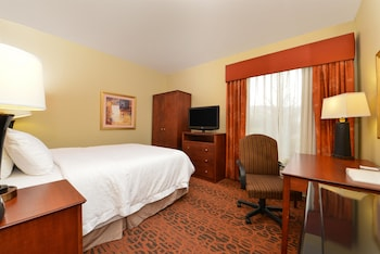 Room, 1 Queen Bed, Accessible, Bathtub (Mobility & Hearing)