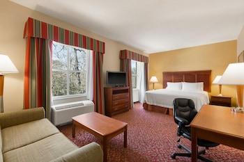 Hotel - Hampton Inn & Suites Williamsburg Historic District