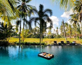 Hotel - Bhanuswari Resort & Spa