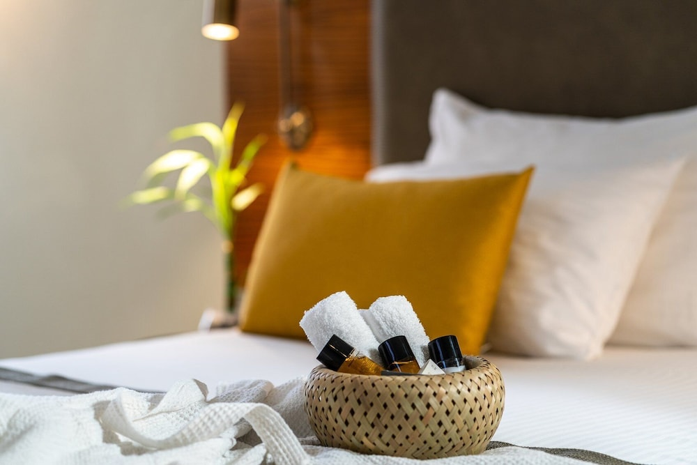https://i.travelapi.com/hotels/2000000/1510000/1503000/1502981/631714a8_z.jpg