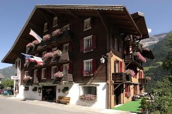 Hotel - Hotel des Alpes