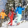The thumbnail of Snowshoeing large image