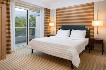 Classic Room, 1 King Bed, Balcony, Park View