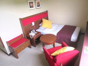 OKAYAMA INTERNATIONAL HOTEL Room