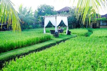 Hotel - Bebek Tepi Sawah Restaurant & Villas