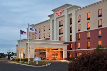 Hotel - Hampton Inn by Hilton Dunn