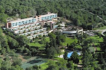 Hotel - Carmel Forest Spa Resort