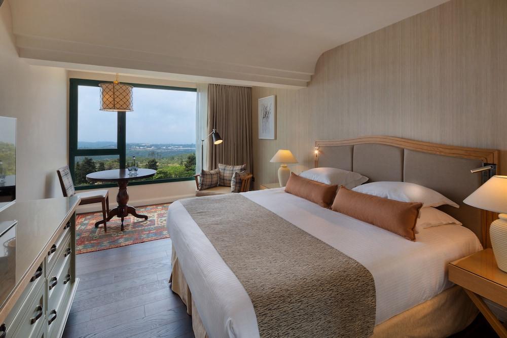 https://i.travelapi.com/hotels/2000000/1550000/1549100/1549098/5d831c2d_z.jpg