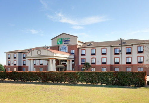 . Holiday Inn Express Hotel & Suites Burleson/Ft. Worth, an IHG Hotel