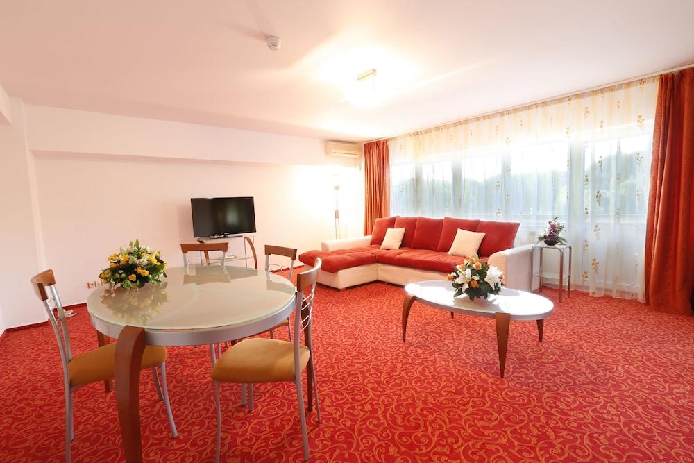 호텔 헤라스트라우(Hotel Herastrau) Hotel Image 21 - 거실