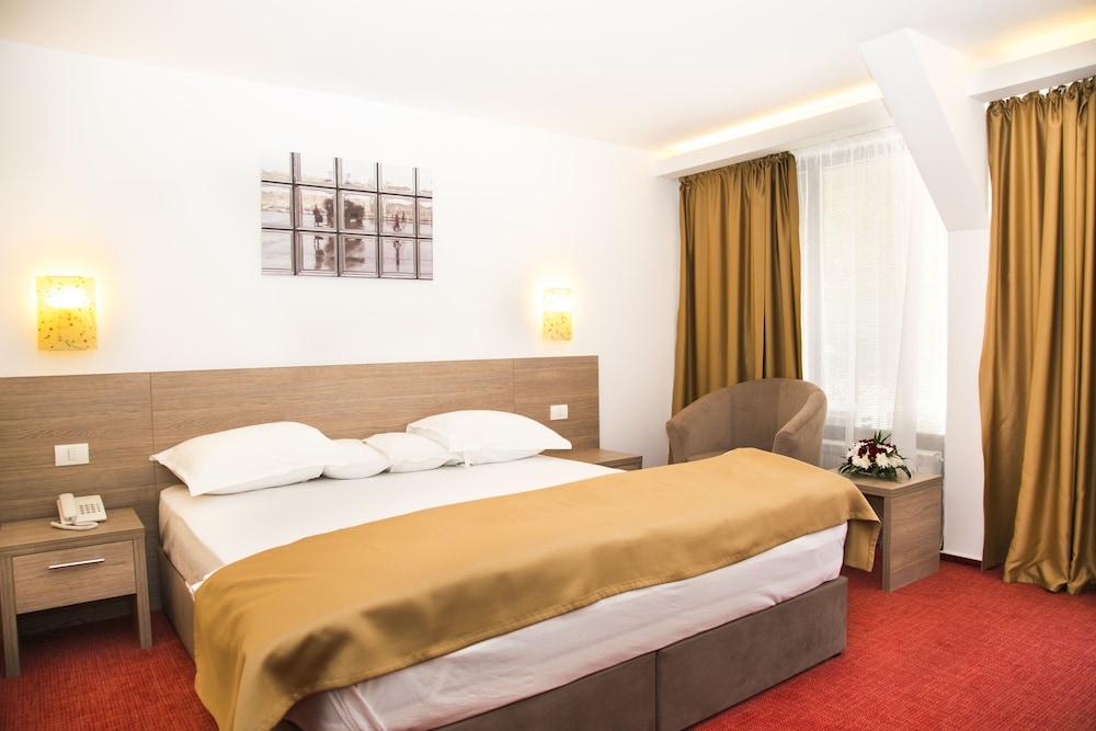 호텔 헤라스트라우(Hotel Herastrau) Hotel Image 10 - 객실