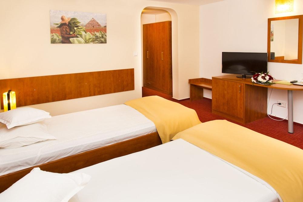 호텔 헤라스트라우(Hotel Herastrau) Hotel Image 4 - 객실