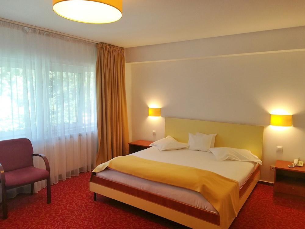 호텔 헤라스트라우(Hotel Herastrau) Hotel Image 16 - 객실