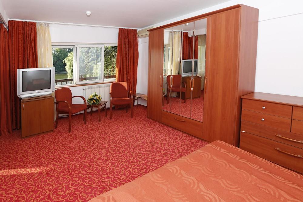 호텔 헤라스트라우(Hotel Herastrau) Hotel Image 2 - 객실