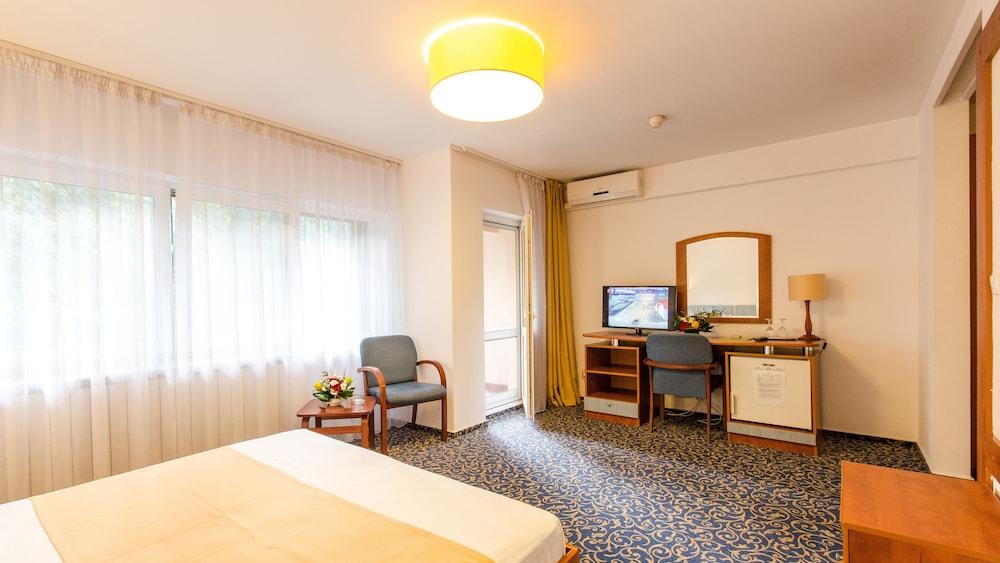 호텔 헤라스트라우(Hotel Herastrau) Hotel Image 15 - 객실