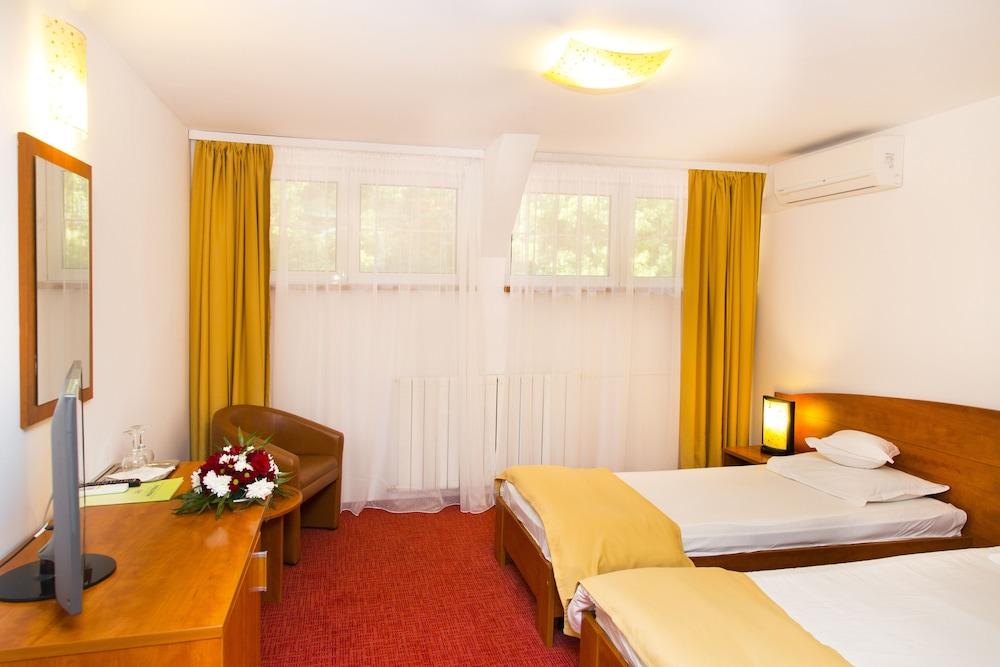 호텔 헤라스트라우(Hotel Herastrau) Hotel Image 5 - 객실