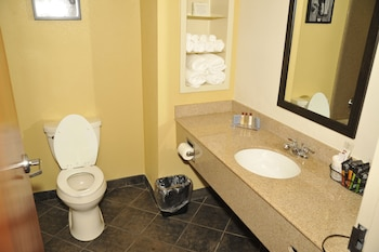 Wingate by Wyndham Bowling Green - Bathroom  - #0