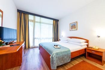Standard Tek Büyük Veya İki Ayrı Yataklı Oda, Balkon, Avlu Manzaralı