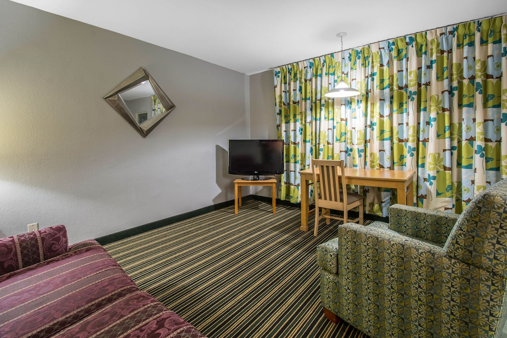 Suite, 1 King Bed with Sofa bed, Non Smoking (Efficiency)
