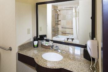 Basic Room, 1 King Bed, Accessible, Bathtub