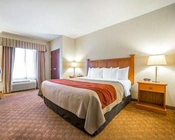 拉斯維加斯-內利斯凱富套房飯店 Comfort Inn & Suites Las Vegas - Nellis