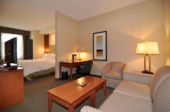 Suite, 1 King Bed, Non Smoking, Kitchenette (Shower Only;with Sofabed)
