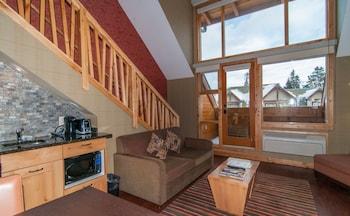 Premium Loft, 1 Bedroom