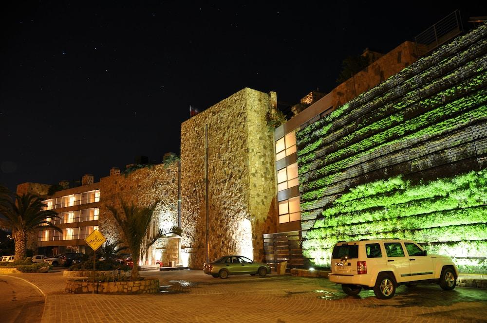 https://i.travelapi.com/hotels/2000000/1660000/1658100/1658063/0167442c_z.jpg