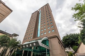 聖保羅盧茨廣場飯店 Luz Plaza São Paulo