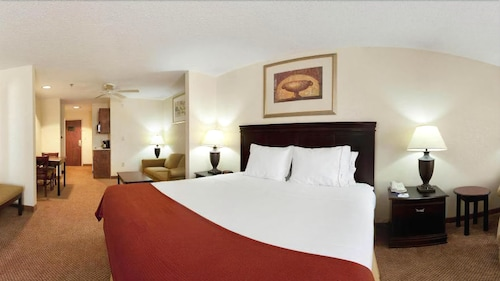 Holiday Inn Express Hotel & Suites Scott - Lafayette West, Lafayette