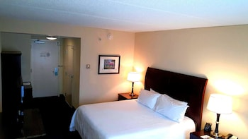 Room, 1 King Bed, Accessible, Bathtub (Hearing Impaired)