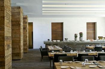 ラ ピュリフィカドラ