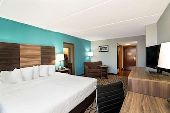 Suite, 1 King Bed, Non Smoking, Mountain View