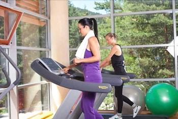 Yastrebets Wellness & Spa