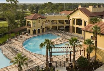 柏克萊奧蘭多飯店 (無渡假村費用) The Berkley, Orlando (No Resort Fees)