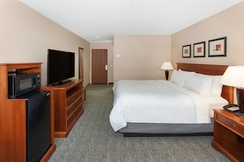 Room, 1 King Bed, Accessible (Comm, Mobil Roll In Shwr)