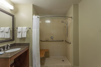Room, 1 King Bed, Accessible, Kitchen (Mobility, Roll-In Shower)