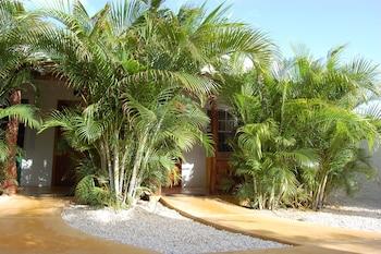 Hotel - Bonaire Fun Apartments