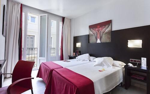 . Hotel del Pintor