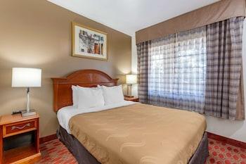 Standard Room, 1 Queen Bed, Non Smoking (Sofa)