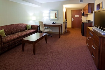 Room, 1 King Bed, Accessible (Hearing Accessible One Bedroom Suite )